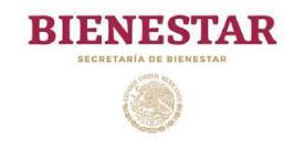 Logo-Secretaria-del-Bienestar-2