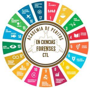 Academia de Peritos ODS 2020